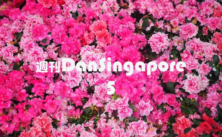 WeeklyDanSingapore5