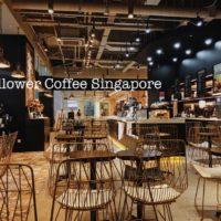 mellowercoffeesingapore