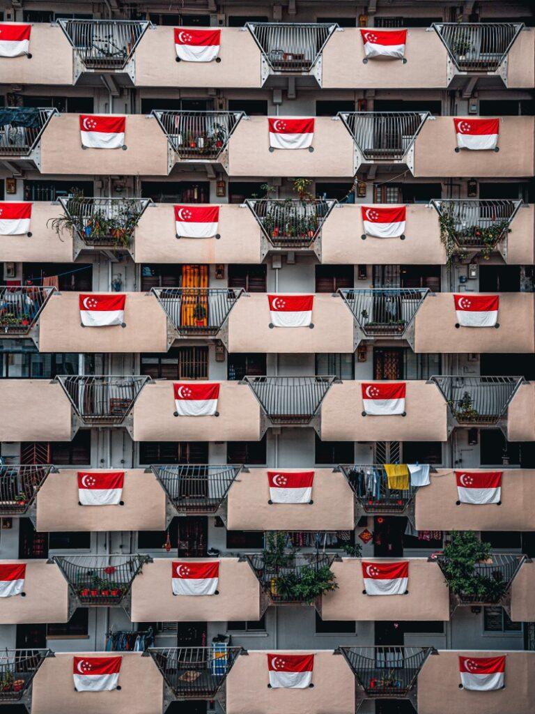 Singapore Flag2